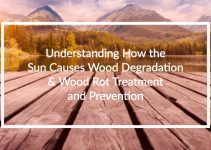 Understanding how the sun causes wood degradation and wood rot treatment and prevention