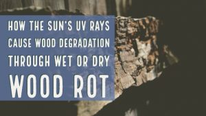 how the sun's uv rays cause wood degradation through wet or dry wood rot