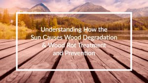 Understanding How the Sun Causes Wood Degradation & Wood Rot Treatment and Prevention